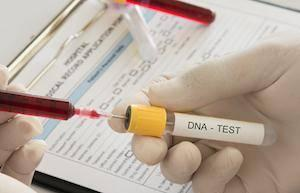 How Accurate Are Paternity Tests?